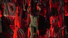 The Naked Clown est un spectacle qui invite le spectateur, entre poésie acrobatique et burlesque du clown, à s'émouvoir et à s'interroger : combien de carapa...