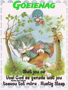 Afrikaanse Quotes, Goeie Nag, Good Night Wishes, Teddy Bear, Van, Animals, Blue, Good Evening Wishes, Animales