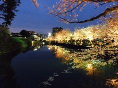 Sumiyagura and moat of Odawara Castle