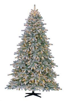7' Pre-lit Douglas Fir Christmas Tree at Menards | Holidays ...
