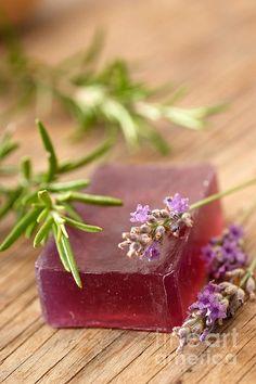Homemade Soap Made From Lavender By Viktor Pravdica