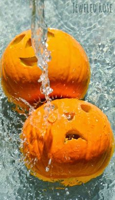A quick & easy tip for making carved pumpkins last: bleach water bath. Go ahead, carve early! Thanks to this handy tip our pumpkins lasted weeks longer and actually made it to Halloween last year! Halloween Pumpkins, Halloween Crafts, Holiday Crafts, Holiday Fun, Halloween Decorations, Holiday Ideas, Halloween Tips, Halloween Activities, Holiday Parties