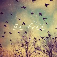 if you love someone you must be prepared to set them free by Paulo Coelho If You Love Someone, Just For You, We Are The World, To Infinity And Beyond, Belle Photo, Birds In Flight, We Heart It, Encouragement, Feelings