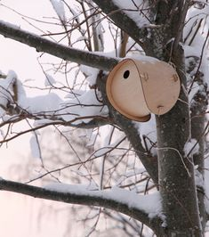http://www.jacksmith.co/birdbox ... a flat packable birdhouse composed of two flat plywood pieces that assembles easily to form a cozy birdhouse.