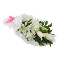 Rangkaian Hand Bouquet Casablanca HB 007