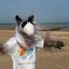 #Oostende #Belgium. Raccoon Pedro is traveling and hunting for #souvenirs for World Wide Gifts.
