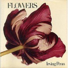 """Meet Me in Philadelphia: Irving Penn's """"Flowers"""""""