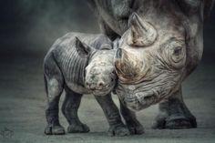 Mother-child bond by Manuela Kulpa
