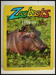 Never had Zoo Books, but I have plenty of fond memories of the commercials playing all the time as a kid.
