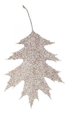 Leaf drawing by Tom Lancaster