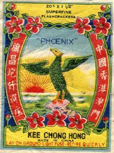 Phoenix_20-1.gif (300×404)