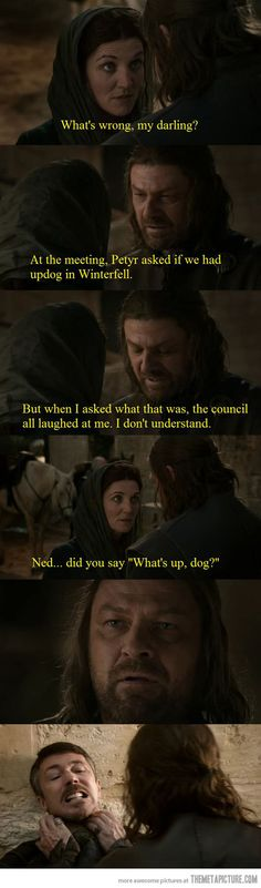 Funny pictures about You think you're funny Baelish? Oh, and cool pics about You think you're funny Baelish? Also, You think you're funny Baelish? Game Of Thrones Pictures, Game Of Thrones Funny, Winter Is Here, Winter Is Coming, Ned Stark, Pokemon, Up Dog, Got Memes, Cinema