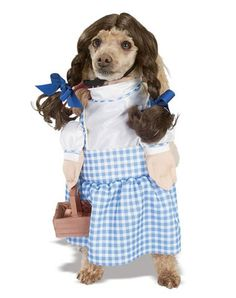 We're off to see the Wizard! For a magical walk, dress your pet as Dorothy in this blue and white check costume with faux arms (one bears a basket); top it off with the pigtail wig and follow the yellow brick road!