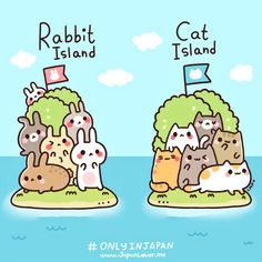Japan's rabbit island and cat island(s) are islands where hundreds of bunnies and cats (respectively) live freely~ with only very few people (residents/caretakers) who stay in the island to take ca...