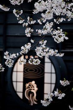 Kyoto Kiyamachi-dori