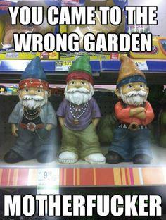 Wrong garden...