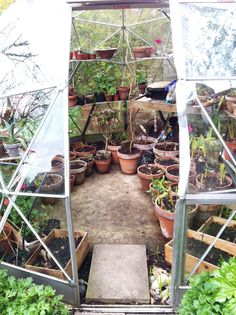 NGS Greenhouse