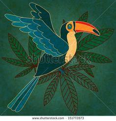 Toucan Draw Fotografie, Toucan Draw Archivní fotografie., Toucan Draw Snímky : Shutterstock.com