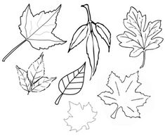 fall leaves cut out printable