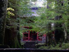 YoTuT, Japan, źródło: Flickr,https://www.flickr.com/photos/yotut/303095075/in/photolist-sMrBa-pMe6Pj-burqgz-9pXayf-a2F9z2-bWG4MM-6JYCUR-tAgedd-oTz27N-EaXWPS-bYjayu-oVAWo2-cZrFAs-dtNeVb-muRspn-4Nc1Zc-9qWp9P-bFvGpT-a95Lza-muRwpg-ecpxw5-BtMV25-7mNb7t-cxbfhL-a8trGq-5QAKHH-GBDZAF-7mDi3s-5e6416-5TRp5g-5ivGpQ-KG2ZWh-c2Tub1-MAJ7uN-9XF4PJ-8RTNvt-8y9MTp-Kc3Rkq-46bgGc-dth2oP-dWW2nA-GNk8kU-aoe7t2-8Lkq2y-7r2Jap-6Xgwud-7tnK2S-4T2LSh-e3DpzA-nGi4Cd. CC BY 2.0