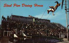 Steel Pier Diving Horse Atlantic City New Jersey