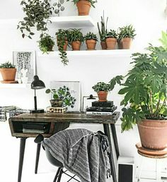 Bring nature inside | plants | green | nature | interior