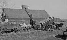 """Lowe unloading corn into a crib """"according to improved methods,"""" south of Kearney, Nebraska. Agriculture, Farm Pictures, Farm Images, Old Photos, Vintage Photos, Old Tractors, Farmall Tractors, Old Farm Equipment, Vintage Farm"""