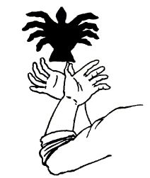 Shadow Images, Shadow Art, Puppets For Kids, Hand Puppets, 3d Art Drawing, Cool Drawings, Shadow Puppets With Hands, Hand Shadows, Shadow Theatre