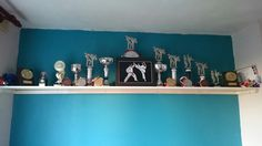 My trophy shelf