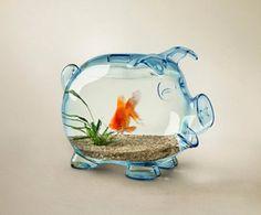 Piggy bank fish bowl