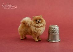 A miniature 1:12 scale Pomeranian sculpture created in September 2012 by hand using polymer clay with delicate wire in the legs, neck and tail. Description from deviantart.com. I searched for this on bing.com/images
