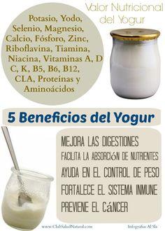 Beneficios del Yogur con Probióticos - Club Salud Natural #probioticos #yogur