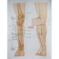 Acupuncture Points, Acupressure Points, Health And Nutrition, Health Fitness, Sigil Magic, Sciatica, Chinese Medicine, Reflexology, Massage Therapy