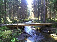 Trans Canada Trail: High Rockies Trail, AB