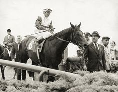 Ruffian on her way to the winner's circle after winning the Mother Goose