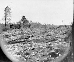 Battlefield at Cold Harbor