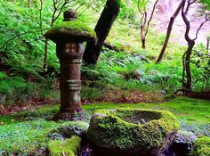 Stone lantern coverd in green moss at Houkokuji Temple, famous temple in Kamakura #japan #beautiful #instagram #ig_japan #igjapan #focusing_on_nature #team_jp_ #nature #green #houkokuji #moss #stonelantern #be_one_green #nikontoday #colorful #japan_daytime_view #fmh_rainbow #fm_alltags #tokyocameraclub