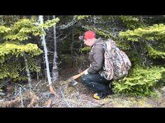 Cory Burry RedHawk Survival Training Institute Remote Survival Training Video Newfoundland Canada Emergency Preparedness, Survival, Newfoundland Canada, Wilderness, Remote, Mens Sunglasses, Training, Adventure, Outdoor