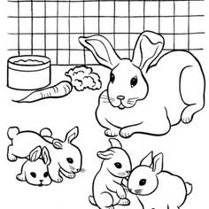Bunnies Besides Cute Animal Coloring Pages In Addition DHVtYmxyIGRyYXdpbmdzIGVhc3k Craghoppers Men S T Shirts Further On