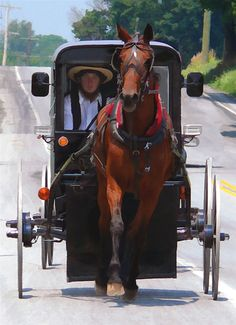 Simple transportation - Lancaster County, Pennsylvania