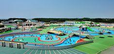 県立辻堂海浜公園 公式サイト -ジャンボプール -プール営業日、時間、料金のご案内