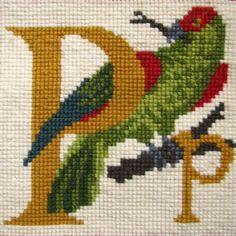 P - Parrot