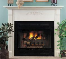 1000 images about FMI Fireplace Doors on Pinterest