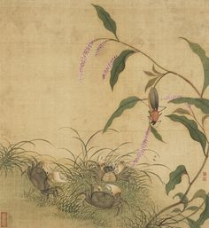Album of Flowers and Insects Zhu Ruining (China, Qing dynasty, 1644-1911) China, Qing dynasty, 1644-1911 Paintings Ink and color on paper Julian C. Wright Bequest (M.79.152.532a-l) Chinese Art