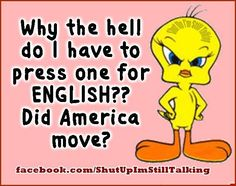 (Sorry for the cuss word) Why do press 1 for english funny quotes quote crazy funny quote funny quotes looney tunes humor Looney Tunes, Tweety Bird Quotes, Adult Humor, Learn English, Laugh Out Loud, I Laughed, Laughter, Funny Pictures, Funny Quotes