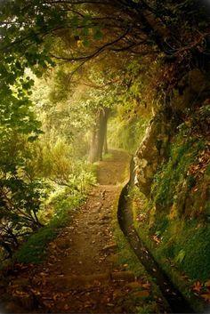 Se promener le long des chemins tortueux, découvrir à chaque pas un nouveau paysage, sentir l'humus frais des arbres, revenir les chaussures boueuses, fatigués, se changer, faire un feu et prendre un café chaud.