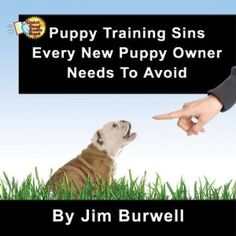 Puppy Training Sins You Must Avoid to have a great puppy