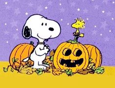"""Here you'll find information on the spooky Peanuts cartoon classic """"It's the Great Pumpkin, Charlie Brown."""" We'll have fun trick or treating with the Peanuts gang, bobbing for apples with Linus and Lucy and listening to. Charlie Brown Halloween, Peanuts Halloween, Halloween Cartoons, Halloween Clipart, Charlie Brown And Snoopy, Halloween Images, Halloween Art, Halloween Applique, Halloween Jewelry"""