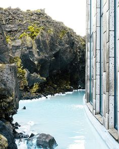 Delicious meal with a great view at LAVA Restaurant. #BlueLagoon #Iceland - Photo by @tonytypes