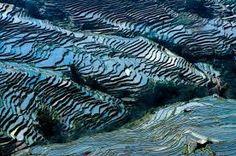 Resultado de imagem para terraced fields china